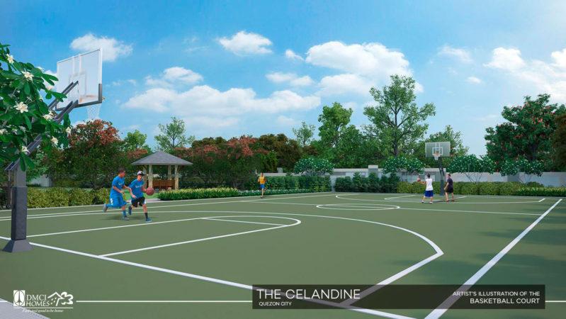 the-celandine-basketball-court